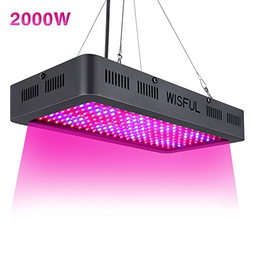 Led Grow Light Full Spectrum 2000W, Double Chips Growing Lamps with UV & IR Indoor Plants Grow Lights with Protective Sunglasses for Greenhouse Hydroponic Veg and - Sunglasses 2000