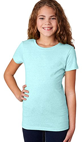 - Next Level The Princess Supersoft CVC Jersey T-Shirt, L, ICE BLUE