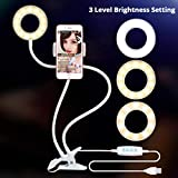 LIJUEZL Selfie Ring Light w/Cell Phone Holder & Desktop Stand for Video Live Stream/Makeup - 3-Light Mode and 10-Level Brightness LED Desk Lamp,White