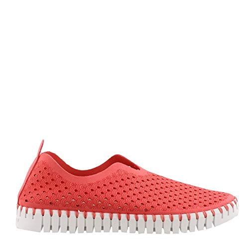 ILSE JACOBSEN Women's, Tulip Slip On Sneaker Raspberry 39 M