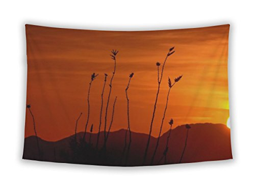 Gear New Wall Tapestry For Bedroom Hanging Art Decor College Dorm Bohemian, Tucson Ocotillo Cactus And Setting Sun In Saguaro National Park, 80x68 Sonoran Desert Saguaro National Park