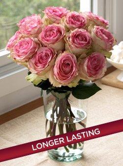 One Dozen Crown Majesty Roses One Dozen Organic Bouquet