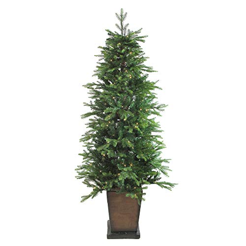 Northlight 6' Pre-Lit Potted Oregon Noble Fir Artificial Christmas Tree - Warm White LED Lights -