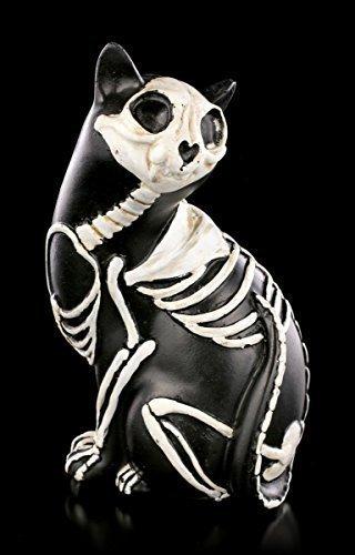 Negro Esqueleto Gatos Figura Gótica Decoración fantasía: Amazon.es: Hogar