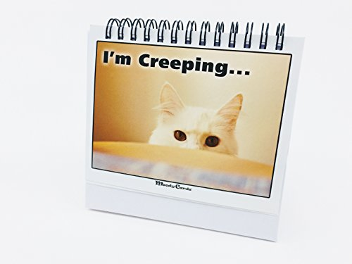 Office Gift For Cat Lovers – Moodycards! Make Everyone Laugh with These Adorable and Hilarious Cats – Let The Kittys Tell Everyone How You Feel! A Terrific Office Gift! 25 Different Moods