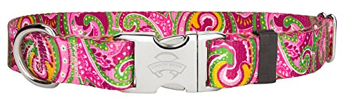 25 - Country Brook Design Green Paisley Premium Dog Collars - Extra Large