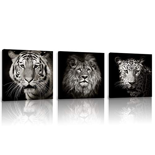 FUNHUA Pictures of Tiger Lion Leopard for Boys Bedroom Office KTV Wall Decor Black and White Animals Posters and Prints with Wooden Frame 12x12inchx3pcs ()