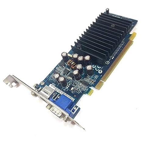 HP - Tarjeta gráfica ASUS GeForce 6200SE 5188-2888 C262H ...