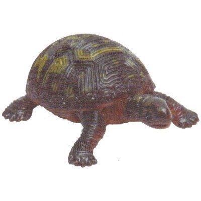 Kamekamezu [5. Eastern box turtle] (single)