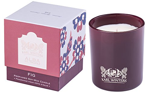 Luxury Scented Candle 10oz - Fig from Provence