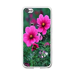 Customized Girly Design Flowers Pattern Cover Case for Iphone 5c Cute Floral Back Phone Case Skin (rose red flowers)