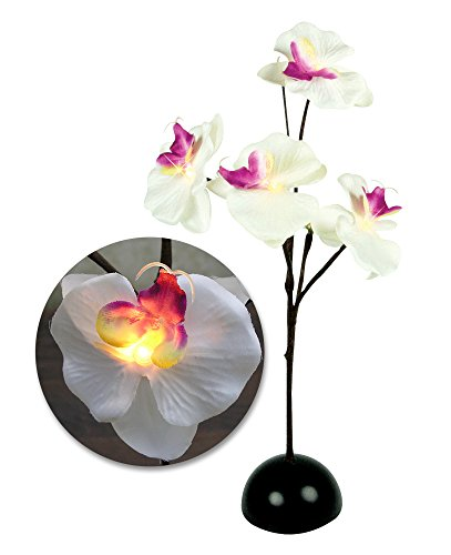 Lighted Bouquet (Orchid Plant - Lighted LED Orchid Flower Bouquet - White and Purple Silk Orchid Plant - Each Flower Lights Up - Mother's Day)