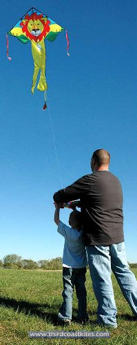 "Large Easy Flyer Kite - Poison Dart Frog (46"" X 90"") with 300 Ft 30lb Test Kite String and Winder"