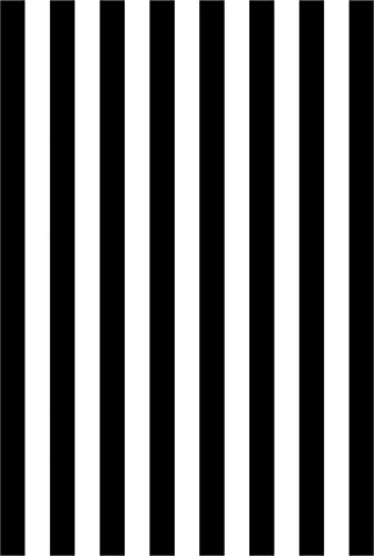 Leyiyi 5x7ft Photography Background Black and White Stripe Backdrop Happy Birthday Party Vertical Horizontal Stripes Summer Holiday Banquet Baby Shower Blog Make-up Photo Portrait Vinyl Studio Prop (Black And White Horizontal And Vertical Stripes)