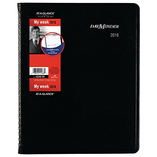 "AT-A-GLANCE DayMinder Weekly / Monthly Planner with Notes, January 2018 - December 2018, 6-7/8"" x 8-3/4"", Executive, Black (G54600)"