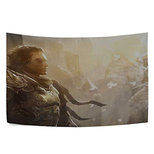 MAXM Guild Wars Character Armor Light Look Wall Hanging Tapestry Bedroom Living Room Beach Doorway Curtain Christmas Thanksgiving Day Decoration 60 X 40 Inch