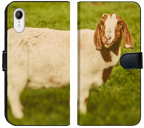 Luxlady iPhone XR Flip Fabric Wallet Case Image ID: 34232218 Goat on a Green Grass as Sign of 2015 Year by Chinese Calendar Vintage t