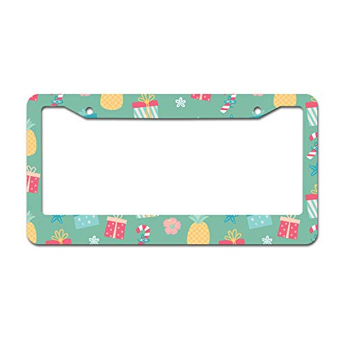 (DKISEE Abstract Flamingo 04 License Plate Frame Aluminum Car Licence Plate Covers with 2 Holes 12
