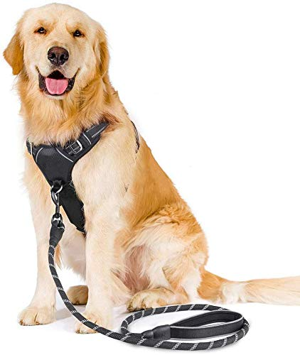 rabbitgoo No-Pull Dog Harness Leash Set Heavy Duty Halter Harness with Leash for Large Dogs 3M Reflective Adjustable Pet…