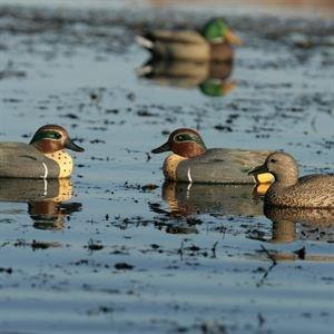 Avery Greenhead Gear, Life-size Weighted Keel Green Duck Decoy, 73021 - 6 Pack by Avery Outdoors