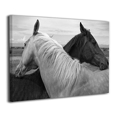 Arnold Glenn White Horse and Black Horse Canvas Wall Art Prints Photo Contemporary Paintings Home Decoration Giclee Artwork Wood Frame Gallery Wrapped