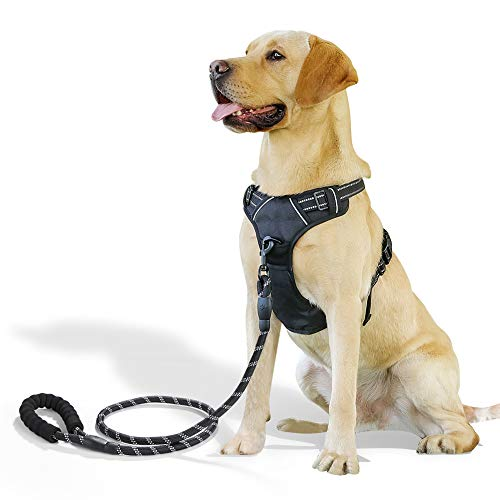 Raining Pet No PullDog Harness Large Dogs Leash Set, Reflective Dog Harness Large Breed (Small Harness And Leash)