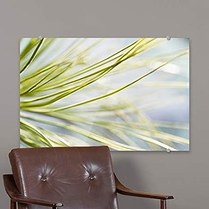 5-Pack CGSignLab Circle CapturePhoto Nature -Lost in The Pines Premium Acrylic Sign | 27x18