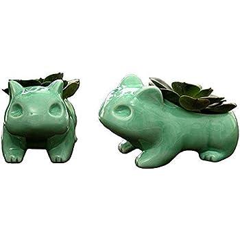 Amazon.com: Doyolla Mini Bulbasaur macetas suculentas lindo ...