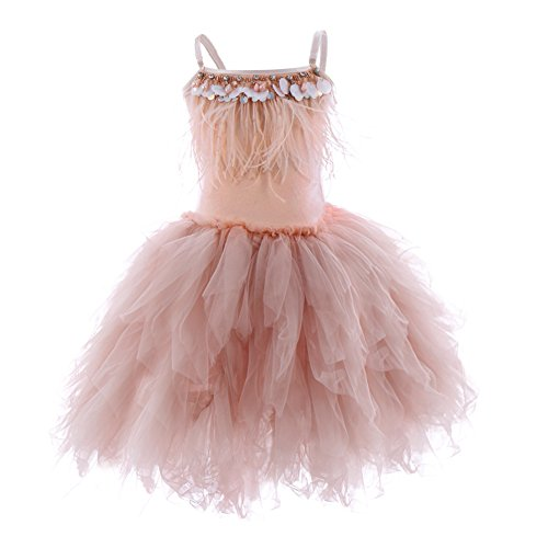 IBTOM CASTLE Kids Swan Princess Dance Costume Feather Fringes Ballerina Fancy Dress for Baby Girl Pageant Party Prom Birthday Short Ball Gown Dusty Pink 3-4 -