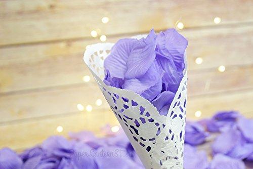 Quasimoon Lavender Confetti Weddings PaperLanternStore
