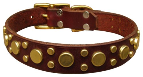 "Paco Collars - ""Pickles"" - Handmade Leather Medium Dog Collar - 1""Wide - Brass - Black 18""-20"""