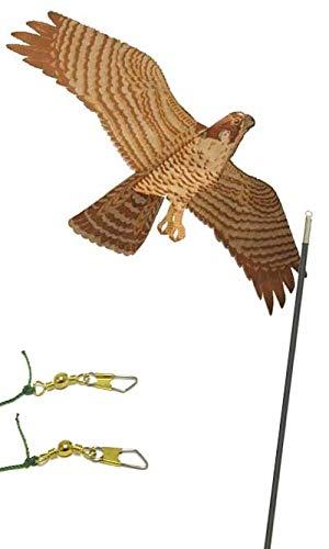 BestNest Jackite Peregrine Falcon Kite Package