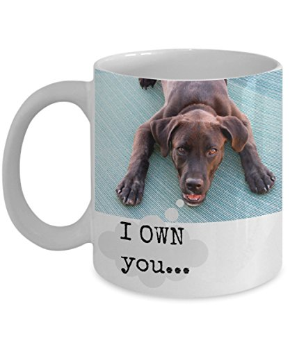 funny chocolate Labrador Retriever gift mug -- I OWN you... - 11 oz. ceramic coffee mug perfect for brown lab lovers and owners