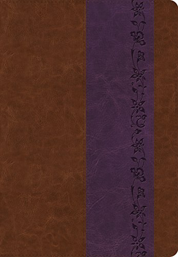 ESV Giant Print Bible (TruTone, Brown/Purple, Iris Design)