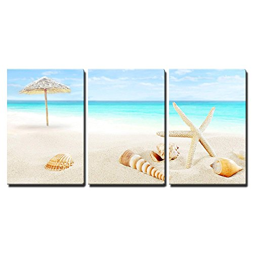 Scenery of Tropical Summer Resort White Beach with Starfish and Seashells x3 Panels