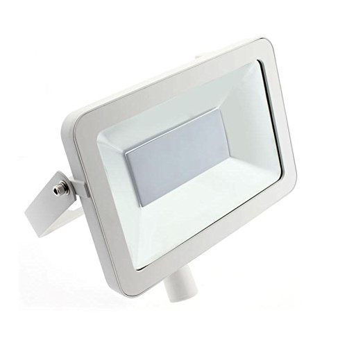 Ledbox LD1020420 Proyector Led, 50 W, Blanco Neutro: Amazon.es ...
