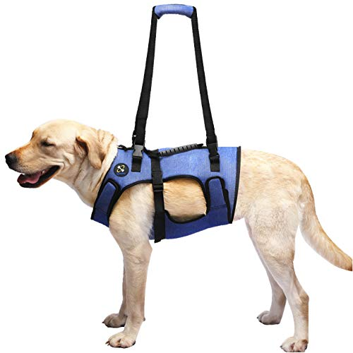 Support Harness - COODEO Dog Lift Harness, Support & Recovery Sling, Pet Rehabilitation Lifts Vest Adjustable Breathable Straps for Old, Disabled, Joint Injuries, Arthritis, Paralysis Dogs Walk (Large)