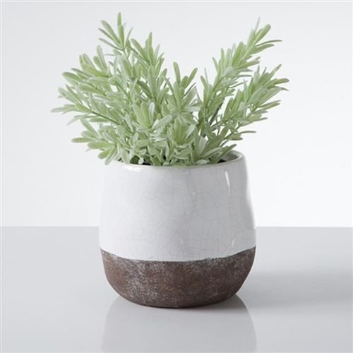 Torre & Tagus 902108A Corsica Ceramic Crackle 2 Tone 4 inch Round Pot- White