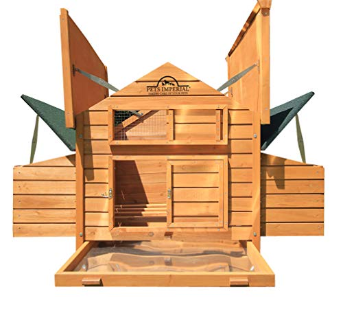 Pets Imperial Double Savoy Large Chicken Coop with 2 Nest Boxes Suitable Up to 10 Small Birds (Building Your Own Chicken Coop And Run)