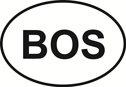 Boston Euro Oval Bumper Sticker