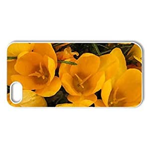 Yellow crocuses - Case Cover for iPhone 5 and 5S (Flowers Series, Watercolor style, White)