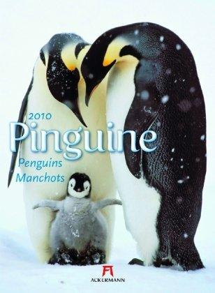 pinguine-2010