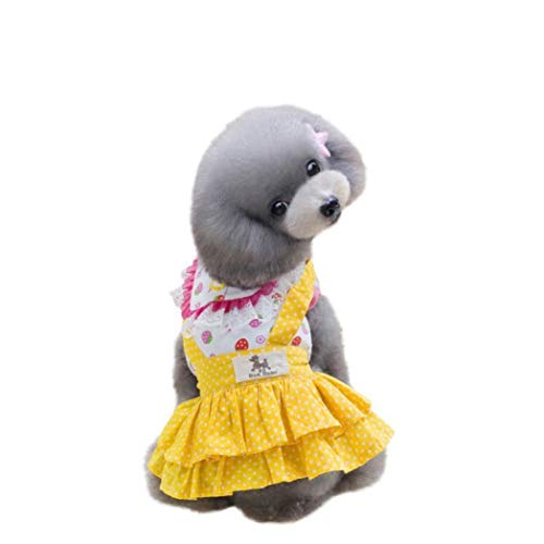 Denim Dachshund Shirt Miniature (Jim-Hugh Dog Pet Lace Tutu Dresses Puppy Doggy Chihuahua Skirt Ruffled Party Clothes)