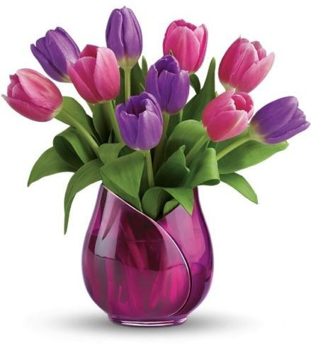 Telefloras Two Lips Vase