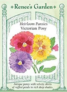 Pansy - Victorian Posy Seeds