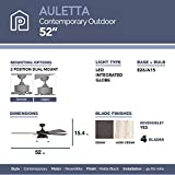 Prominence Home 50345-01 Auletta Outdoor Ceiling