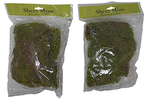 Preserved Natural Sheet Moss (Pack of 2, 510 Cubic Inch Total) Fresh Green, Decorative Enhancement for Fairy Gardens, Terrariums, Potted Plants, Indoor, Wreath, Floral Decor, Arts & Crafts