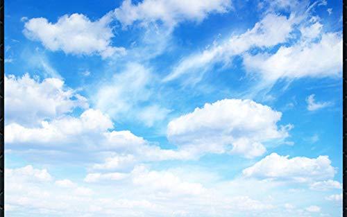 Blue Sky, White Cloud, Clear 3D Celestial Wall - Tips Clear 350 Lights