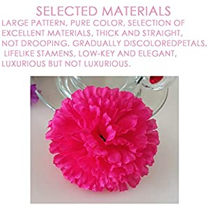 Silk Carnations Artificial Fake Hydrangea Decor Flower Bouquets Weddings Cemetery Crafts Wreaths Floral Arrangements Flowers Party Home Decor or Office 10pcs(Pink,Hot Pink,White,Red) 4