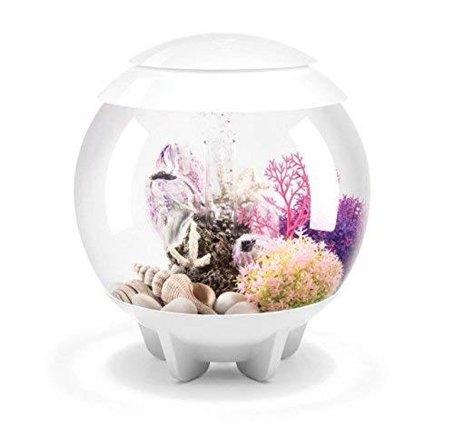 biOrb Halo 30 Aquarium with MCR Light - 8 Gallon, Grey, White by biOrb (Image #1)